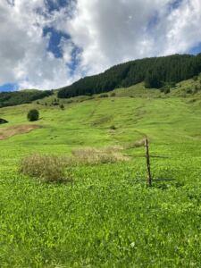 Natur pur in Vals